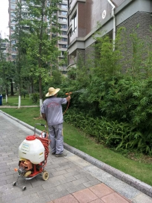 小区、单位灭蚊